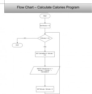 PennFoster 418806 Calories Burnt Flowchart